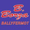 B.Borza